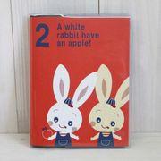 Shinzi Katoh Photo Album [Rabbits]