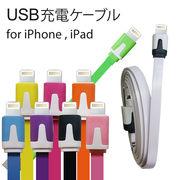 充電ケーブル for iPhone5 iPad 100cm  Lightning対応 USBケーブル / 充電 / iPhone5 / USB