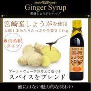 南国宮崎黒糖しょうがシロップ 大瓶