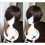 �������� �Ƃ�������� ��䗘���� �������肩�� �R�X�v���E�B�b�O wig cosplay
