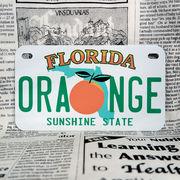 好きな文字にできるアメリカナンバープレート(中・USバイク用サイズ)フロリダ