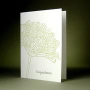 oblation papers&press 活版印刷カード botanical notes おめでとう