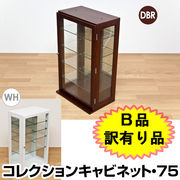 【B品 訳有り品】コレクションキャビネット DBR/WH