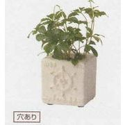 ブランヘルムブロックポット ガーデニング/寄せ植え/テラコッタ/器/オーナメント/植物