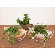 ハンモックスタンドマット ミニ観葉植物/観葉植物/モダン/インテリア/寄せ植え/ガーデニング