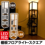 棚付フロアライト スクエア DBR/LBR