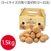 北海道産じゃがいも1.5kg