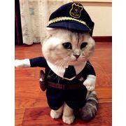 【ペット変装】犬服 猫服 変装 ペット服 ハロウィン 刑事変装 3点セット