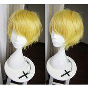 �������� �Ƃ�������� �R�W�؍��L ��܂���肭�ɂЂ� �R�X�v���E�B�b�O wig cosplay
