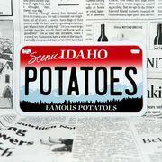好きな文字にできるアメリカナンバープレート(中・USバイク用サイズ)アイダホ