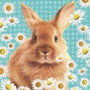 Paper+Design ペーパーナプキン ウサギ デイジー