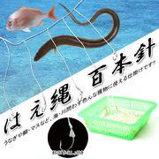 漁師さん御用達!古くから用いられた伝統漁法◆はえ縄◇100本針仕掛け