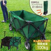 ガーデンワゴン1001-2