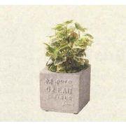 マニッシュスタンプブロックポット S ガーデニング/寄せ植え/テラコッタ/器/オーナメント/植物