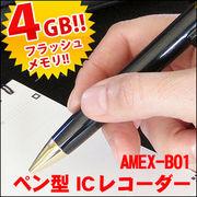 AMEX-B01�@�y���^IC���R�[�_�[