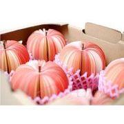 くだもの野菜のメモ帳 ネット付きフルーツ型立体メモ帳 FP-1180