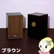 TCA-3-BR 友澤木工 カホン(スナッピー付・響線8本) ブラウン
