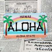 好きな文字にできるアメリカナンバープレート(中・USバイク用サイズ)ハワイ・ヤシの木