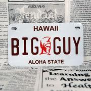 好きな文字にできるアメリカナンバープレート(中・USバイク用サイズ)ハワイ・カメハメハ大王