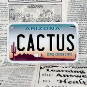好きな文字にできるアメリカナンバープレート(中・USバイク用サイズ)アリゾナ