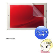 LCD-TS92BCAR �T�����T�v���C ���� dynaPad S92/N72/NZ72�Ή��u���[���C�g�J�b�g�t���ی�w�䔽�˖h�~�E