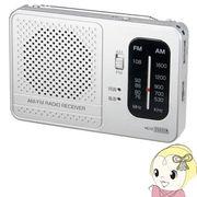 RD13SV ヤザワ 横置き型AM・FMラジオ シルバー
