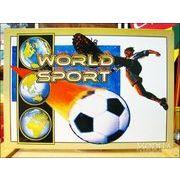 アメリカンブリキ看板 World Sports サッカー