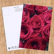花のポストカード バラ(赤)