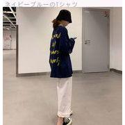 秋服 韓国風 新しいデザイン プリント 長袖Tシャツ トップス 女 ツーリング ハイウエ