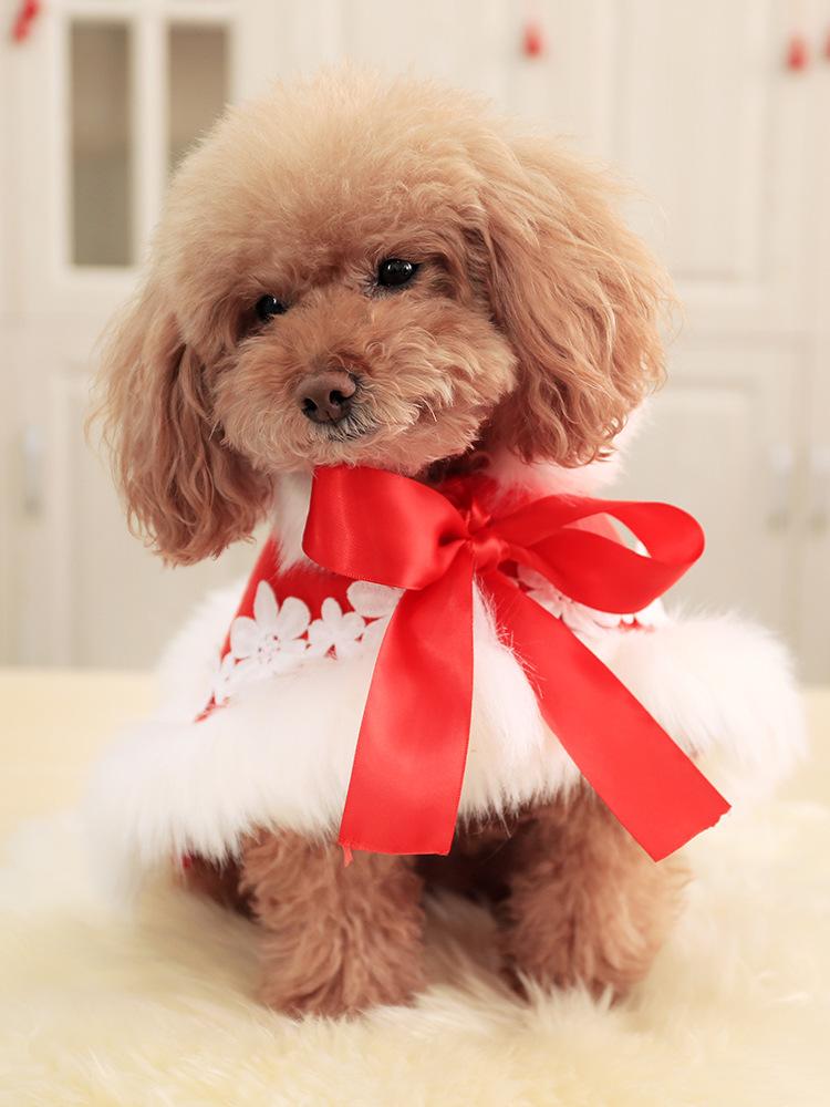 新作 クリスマス  新年  マント 犬服 犬の服 犬 ワンちゃん服 ドッグウェア ペット用品 (XS-XL)