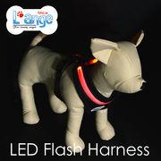 【L'ange】LED フラッシュ ハーネス XS