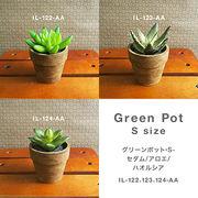 お部屋をグッと華やかに枯れない植物で作る手軽な癒し空間【グリーンポット・S-セダム/アロエ/ハオルシア】