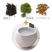 【セット】SASSO(サッソ)キャンドル(大)+苔キット 月下香の香り