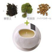 【セット】SASSO(サッソ)キャンドル(小)+苔キット ゼラニウムの香り