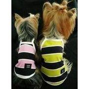 【即納】犬服 ボーダーキャミソール 2カラー 6サイズ展開