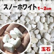 【期間限定5%OFF】【送料無料】玉石砂利 スノーホワイト/白色 粒1-2cm 300kg(約5平米分)