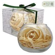new Sola Flower ソラフラワー グラスボウル ジェントルローズ Glass Bowl◆ポプリ/造花