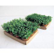 MINI GRASS POTS - FAKE GRASS (24 PCS/SET)