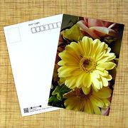 花のポストカード ガーベラ(黄色)