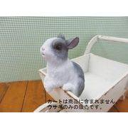 丸和貿易 ウサギの置物 チアフルフレンズ ウサギのミル