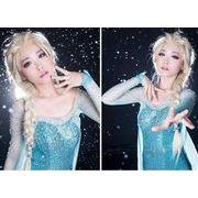 アナと雪の女王  エルサ風  キャラクターウィッグ コスプレ