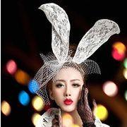 化粧仮装舞踏会 レースマスク 万聖節 パーティー 仮面 ウサギマスク