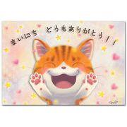 猫作家Megポストカード 毎日ありがとう