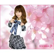 1134D★■送料無料■ AKB48 桜の栞衣装 サイズ:M/BIG