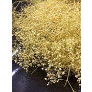 東北花材 プリザーブドフラワー ソフトミニカスミ イエロー