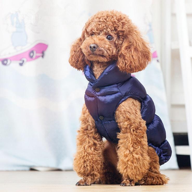 メーカー直販 ペット服 犬服 ペット用品 ネコ雑貨   ペット雑貨