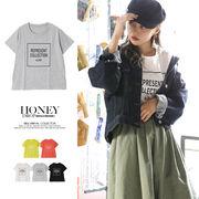 【2018春夏新作】ロゴTシャツ/REPRESENT COLLECTION/トップス/シンプル