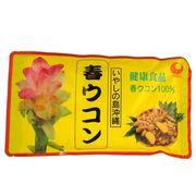 沖縄県産品 春ウコン粉末(容器) 100g