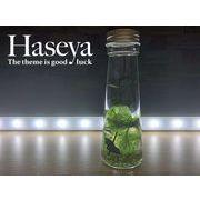 【HaseyaCollections】天然石入りハーバリウム テーパー型50ml