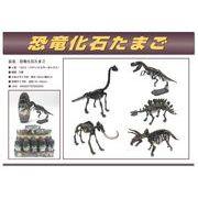 たまごの中から恐竜が!★恐竜 化石たまご★